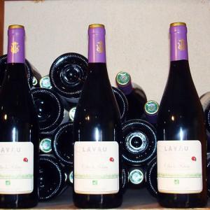 vin-cotes-du-rhone-lavau