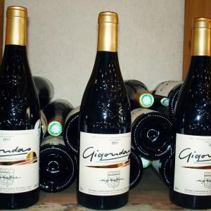 vin-gigondas-chateauneuf-du-pape